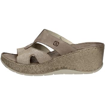 Chaussures Femme Sandales et Nu-pieds Sintonie AS5013 TAUPE