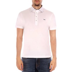 Vêtements Homme Polos manches courtes Harmont & Blaine POLO FINTINO blanc
