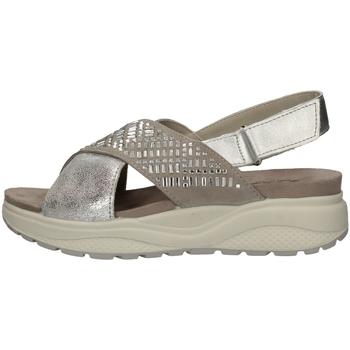 Chaussures Femme Sandales et Nu-pieds Imac 309730 ARGENT