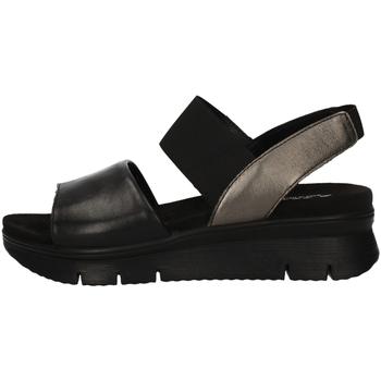 Chaussures Femme Sandales et Nu-pieds Imac 309430 NOIR
