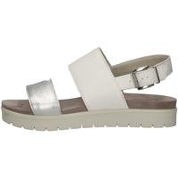 Chaussures Femme Sandales et Nu-pieds Imac 308090 BLANC