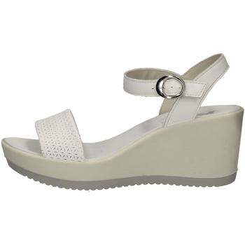 Chaussures Femme Sandales et Nu-pieds Imac 307450 BLANC