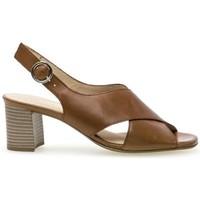 Chaussures Femme Sandales et Nu-pieds Gabor Sandales ville cognac Cognac