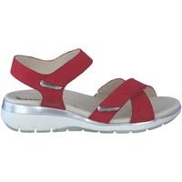 Chaussures Femme Sandales et Nu-pieds Mephisto Sandale KRISTINA gris souris Rouge