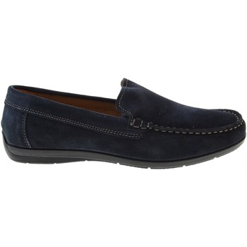 Chaussures Homme Mocassins Enval  Blu