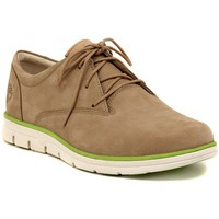 Chaussures Homme Derbies Timberland PLAIN TOE OXFORD  TAUPE    113,8