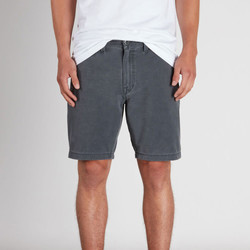 Vêtements Homme Shorts / Bermudas Volcom Frickin Snt Faded Gunmetal Grey