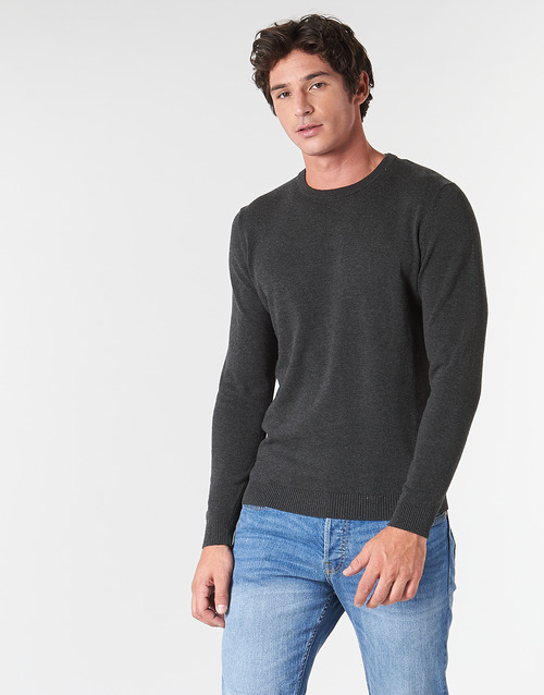 Vêtements Homme Pulls Jack & Jones JJEBASIC Gris