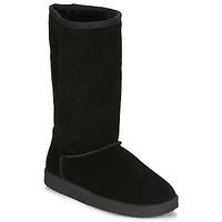 Chaussures Femme Boots André TOULOU Noir