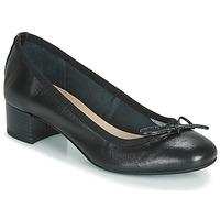 Chaussures Femme Ballerines / babies André POEME Noir