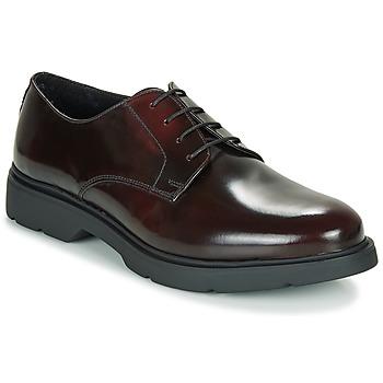 Chaussures Homme Derbies André CHAD Bordeaux
