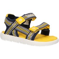 Chaussures Enfant Sandales et Nu-pieds Timberland A1Y9X PERKINS Azul