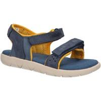 Chaussures Enfant Sandales et Nu-pieds Timberland A24J7 NUBBLE Azul