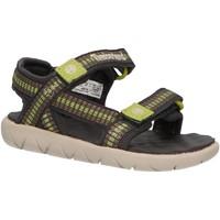 Chaussures Enfant Sandales et Nu-pieds Timberland A1PW4 PERKINS Verde