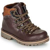 Chaussures Garçon Boots André REMY Marron