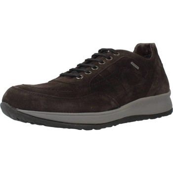 Chaussures Homme Baskets basses Stonefly 64236 Marron