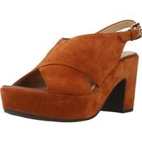 Chaussures Femme Sandales et Nu-pieds Geox D ZAFERLY B Brun