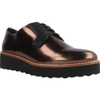 Chaussures Femme Derbies & Richelieu Gas SIRJA LACE Brun