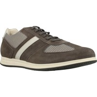 Chaussures Homme Baskets basses Stonefly WALKY 4 Marron