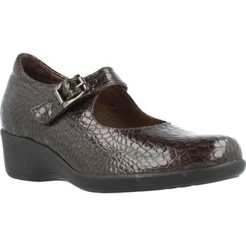 Chaussures Femme Derbies & Richelieu Mateo Miquel 3070 Brun