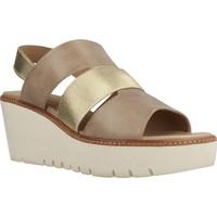Chaussures Femme Sandales et Nu-pieds Geox D DOMEZIA Brun