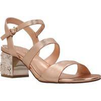 Chaussures Femme Sandales et Nu-pieds Elvio Zanon H5201P Brun