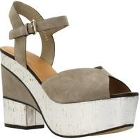 Chaussures Femme Sandales et Nu-pieds Elvio Zanon H5701P Brun