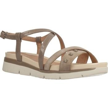 Chaussures Femme Marques à la une Stonefly 110424 Brun