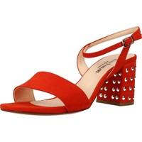 Chaussures Femme Sandales et Nu-pieds Eliza Ferrari 170 60 Orange