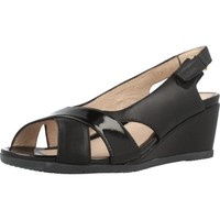 Chaussures Femme Sandales et Nu-pieds Stonefly SWEET III 4 Noir