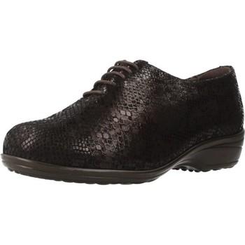 Chaussures Femme Richelieu Pinoso's 7667 G Marron