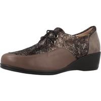 Chaussures Femme Derbies Argenta 30251 Brun