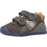 Chaussures Garçon Baskets basses Biomecanics 181155 Gris