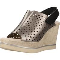 Chaussures Femme Sandales et Nu-pieds Carmela 66165C Gris