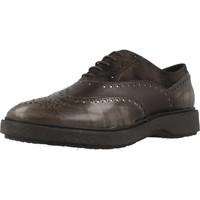 Chaussures Femme Derbies Geox D PRESTYN Brun