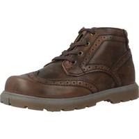 Chaussures Garçon Boots Chicco CIAK Marron