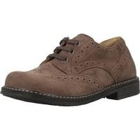 Chaussures Garçon Derbies Chicco 84729 Marron