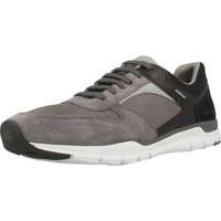 Chaussures Homme Baskets basses Geox U CALAR A Gris
