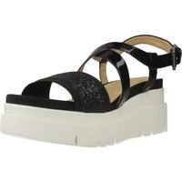 Chaussures Femme Sandales et Nu-pieds Geox D RADWA D Noir