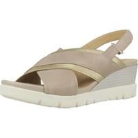 Chaussures Femme Sandales et Nu-pieds Geox D MARYKARMEN P.D Brun