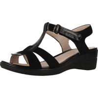 Chaussures Femme Sandales et Nu-pieds Stonefly 210847 Noir