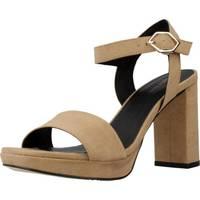 Chaussures Femme Sandales et Nu-pieds Angel Alarcon 19500 750 Brun