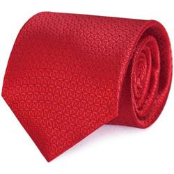 Vêtements Homme Cravates et accessoires Dandytouch Cravate Relief rouge