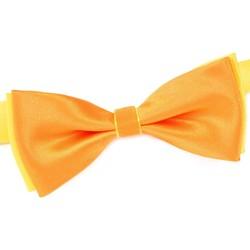 Vêtements Homme Cravates et accessoires Dandytouch Noeud papillon BeCool Bantry orange