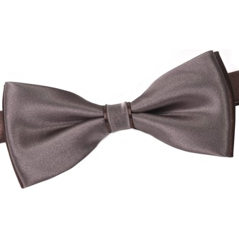 Vêtements Homme Cravates et accessoires Dandytouch Noeud papillon BeCool Troon marron