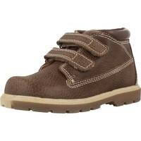 Chaussures Garçon Boots Chicco CARDAX Marron