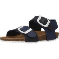 Chaussures Garçon Sandales et Nu-pieds Garvalin 192480 Bleu