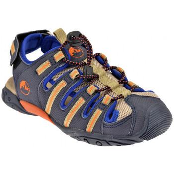 Chaussures Garçon Sandales et Nu-pieds Lumberjack Wild 30/37 Sandales bleu