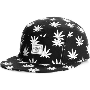 Casquette Cayler Sons Casquette 5 panel Cayler and Sons Budz N stripes