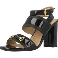 Chaussures Femme Sandales et Nu-pieds Geox D AUDALIES H.S.C Noir